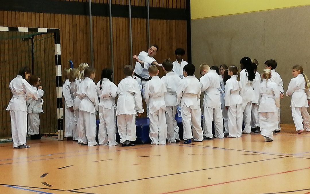 Judoprojekt in der dritten Klasse