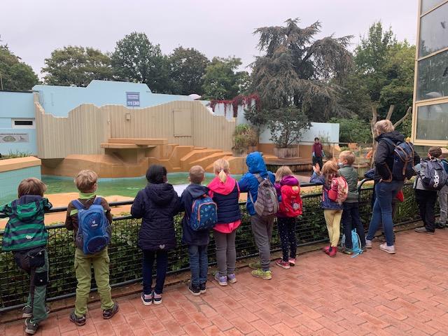 Ein Besuch im Zoo